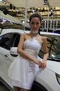 丰田9号车模