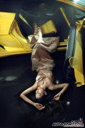 奥运星车尚 黄