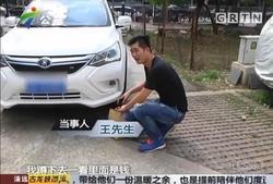 比亚迪车主捡30万归还 被赞中国好车主