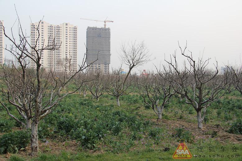 淮安市柳树湾风景区