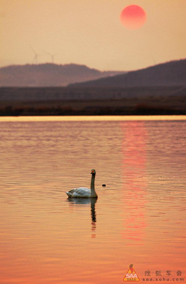 这个时候,太阳看起来有一种淡淡橘红,让眼前的湖面变得像一幅水彩画.