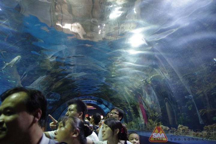 这次又去动物园海洋馆玩一圈